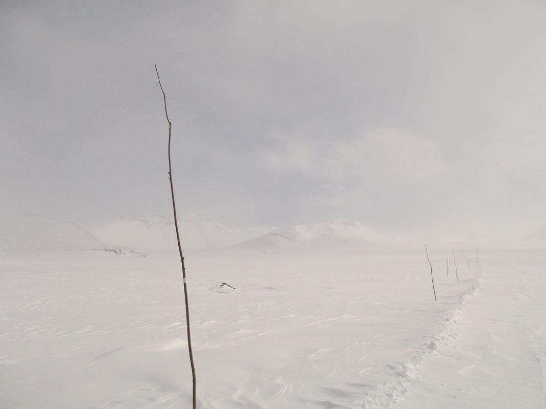 Мягкий пейзаж с вешками